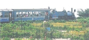 Darjeeling Himlayan Railway an attaraction of Eastern Himalaya