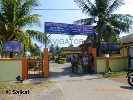 Fisheries Museum (Aquarium)- Port Blair