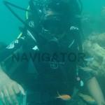 Andaman Coral Reef Tour 7D