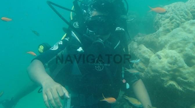Scuba Diving at North Bay (Coral Island)