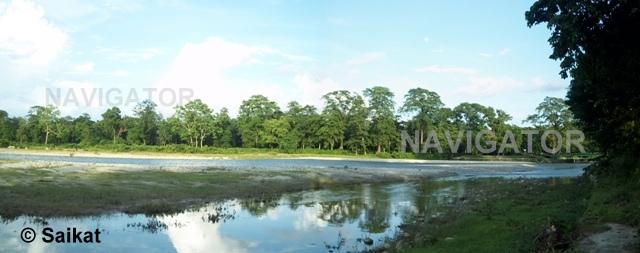 Murti River- Gorumara