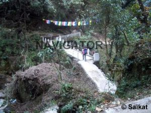 Sandakphu - Srikhola on the way